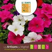 Guide interactif printemps 2021 VERSION HORTICULTURE